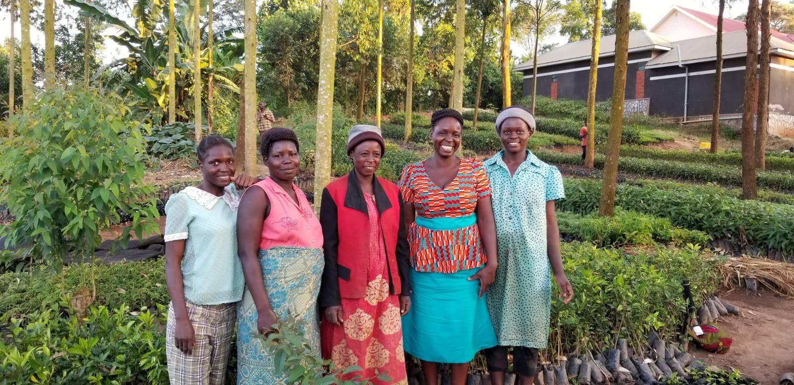 Uganda: Women's group development project